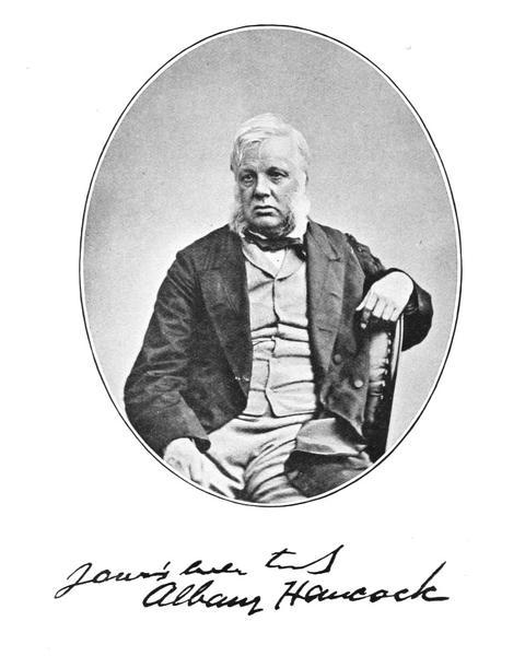 Albany Hancock